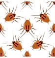 Seamless pattern cockroach on a white background vector image vector image