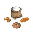 sketch flour bag bread baguette set vector image vector image