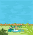 two swans in small pond in the midle of greens vector image vector image