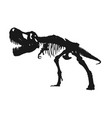 tyrannosaurus rex skeleton silhouette on isolated vector image