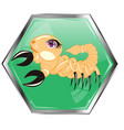 astrological sign scorpion vector image vector image