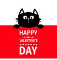 black cat hanging on board signboard cute cartoon vector image vector image