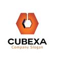 Cubexa Design vector image vector image