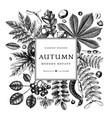 hand sketched autumn leaves design elegant vector image vector image