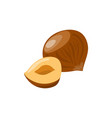 Hazelnut with half icon healthy eating cartoon