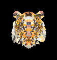 head lion in colorful triangle design on black vector image vector image