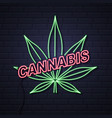 neon cannabis leaf sign on brick wall background vector image