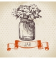 Rustic jar with chamomile bouquet vector image vector image