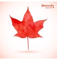 Watercolor red maple leaf vector image vector image