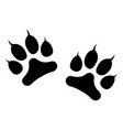 animals footprints with claws isolated on white vector image
