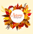 autumn leaf mushroom and forest berry poster vector image vector image