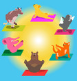 hand-painted yoga postures with cartoon vector image vector image