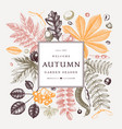 hand sketched autumn leaves frame in color vector image vector image