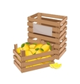 Wooden box full of lemon isolated vector image vector image