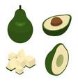 avocado icons set isometric style vector image vector image