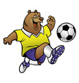 bear cartoon playing soccer vector image vector image