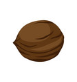 brown walnut icon vector image