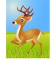 deer cartoon vector image vector image