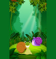 snail in the clear and green forest vector image
