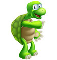 cartoon tortoise or turtle pointing vector image