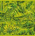 banana leaves seamless green jungle vector image