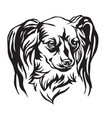 decorative portrait of dog long haired russian vector image vector image
