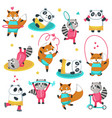 fitness raccoon panda fox icon set vector image