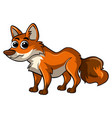 fox with happy face vector image