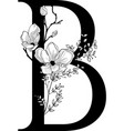 hand drawn floral b monogram and logo vector image vector image