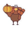 happy thanksgiving day turkey with pumpkin vector image vector image