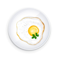 Omelette on a plate with parsley leaflets vector image