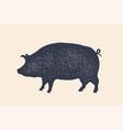 pig pork vintage logo retro print poster vector image