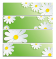 set eco banners with 3d flower chamomile vector image vector image