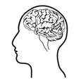 human head with brain vector image