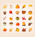 autumn signs and symbols vector image vector image