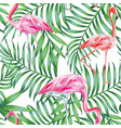 bird flamingo on a background tropical leaves vector image vector image