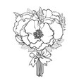 black and white sketch of poppies tied with ribbon vector image vector image