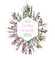 floral geometrical hexagonal design frame pink vector image