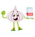 garlic with milk on white background vector image vector image