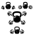 kettlebell with crossed barbells design element vector image vector image