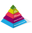 Maslow Psychology Chart vector image vector image