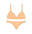 set female underwear isolate on a white vector image