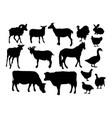 silhouettes farm animals vector image vector image