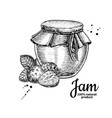 strawberry jam glass jar drawing frui vector image