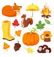 cartoon style set of autumn symbols fox pumpkin vector image