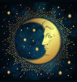 crescent moon and stars in antique style vector image