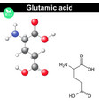 Glutamic acid chemical structure vector image vector image