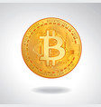 golden coin with bitcoin symbol vector image vector image