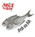meat - fresh sea fish icon fresh flat meat vector image vector image