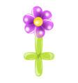 purple balloon flower vector image vector image